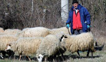 natječaj za poljoprivrednike