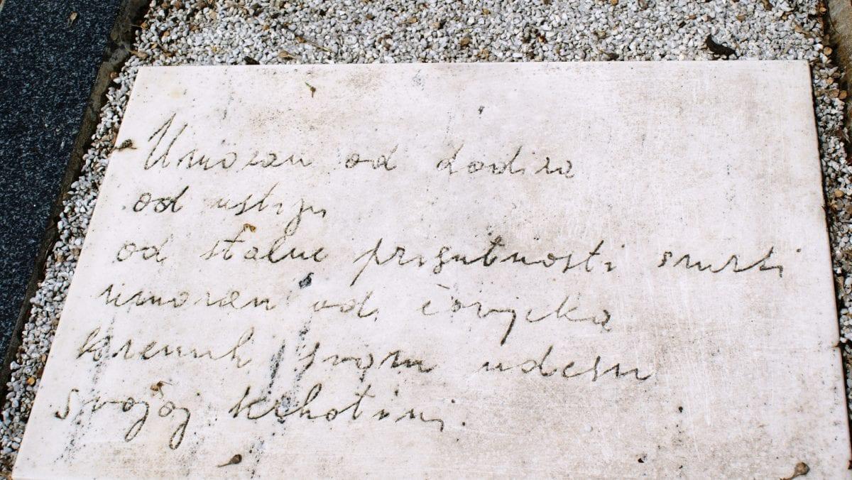 Ugljesa Kojadiinovic